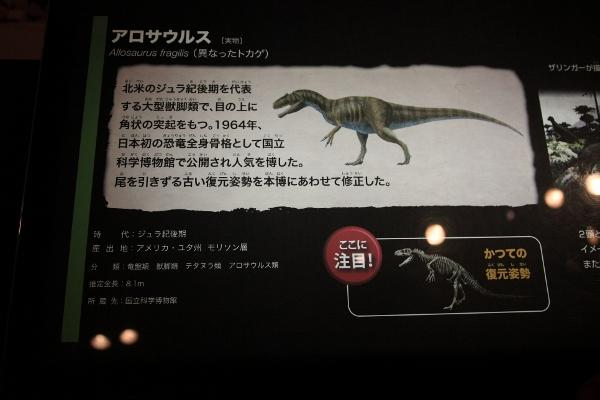 kyoryuhaku_0015f.jpg