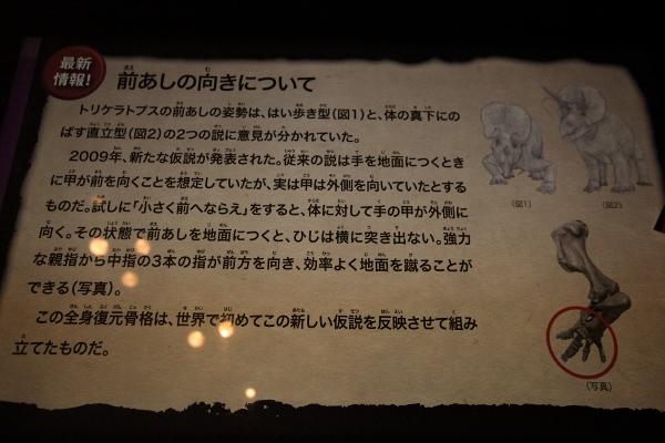 kyoryuhaku_0067f.jpg