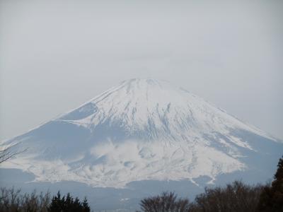 20110115富士山