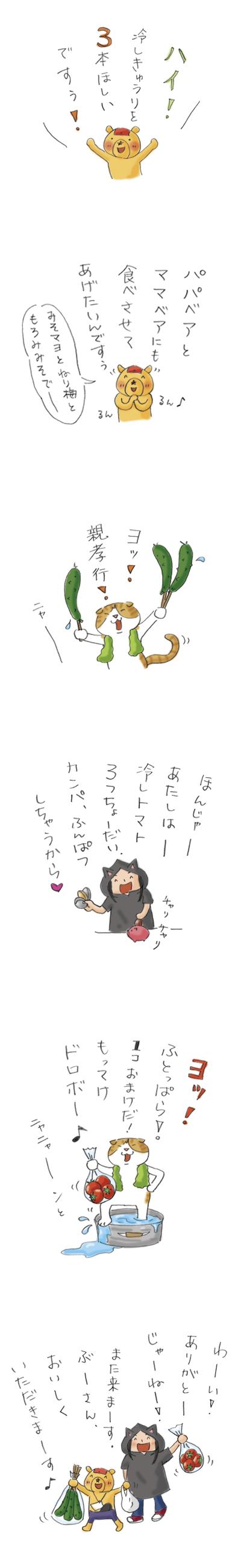 ぶーさんの夏野菜8