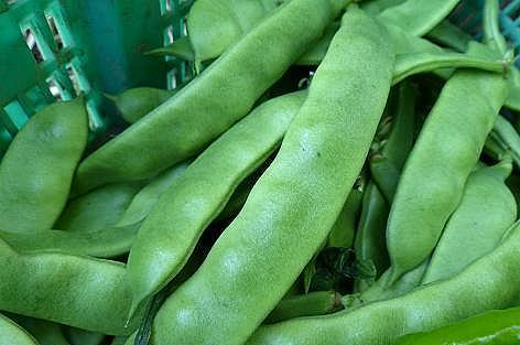 モロッコ豆♪