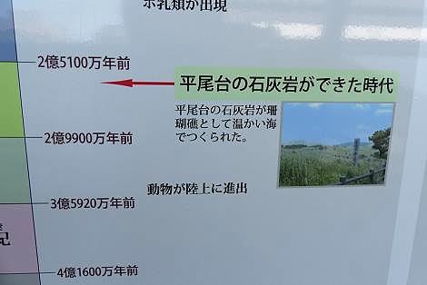 平尾台の石灰岩♪