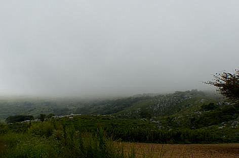 霧の平尾台♪