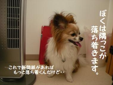 065_20100720125110.jpg
