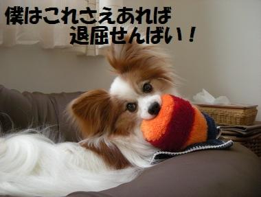 066_20100720125110.jpg