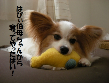 122_20100720164930.jpg
