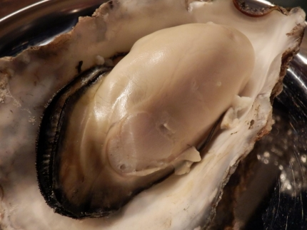かき殻荘 (65)