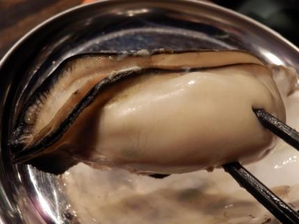 かき殻荘 (66)