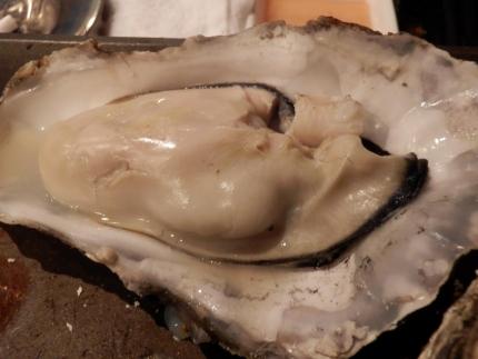 かき殻荘 (61)