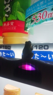 マキシマムザホルモンだ!最高だ!厨房ではない-100825_1925~01.jpg