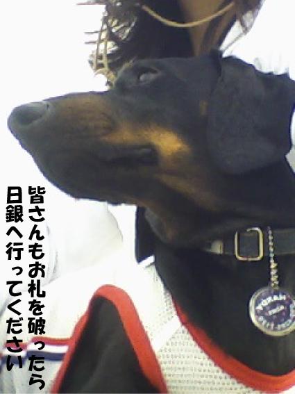 10_20110527015730.jpg