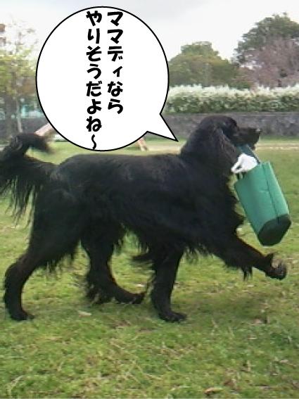 3_20110522021654.jpg