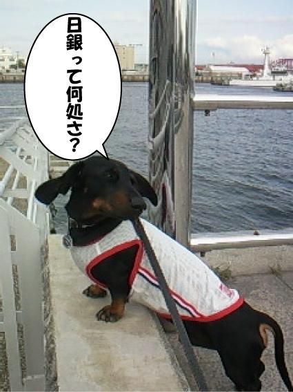 6_20110527015732.jpg