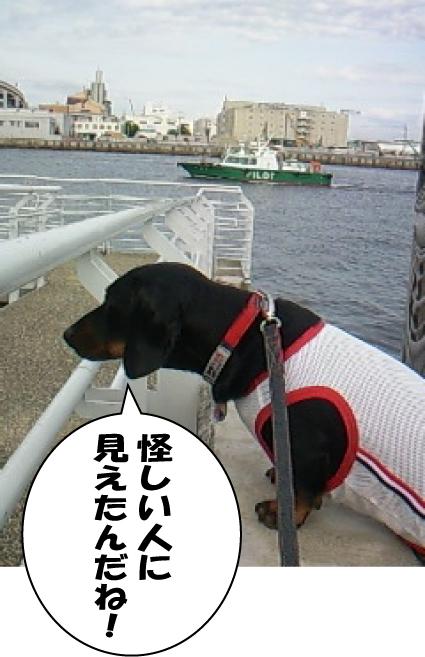 9_20110527015731.jpg