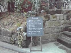 草ランチ1