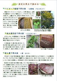 草木染資料1