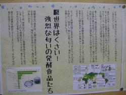 6発酵展示