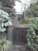 庭の植栽2