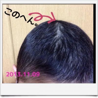 201311100115387b4.jpg