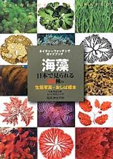 ネイチャーウォッチングガイドブック 海藻