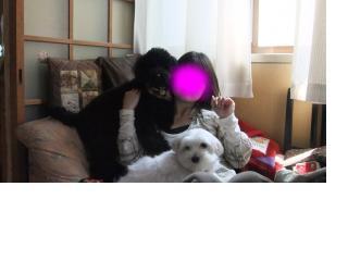 snap_haru0507_201146173336.jpg