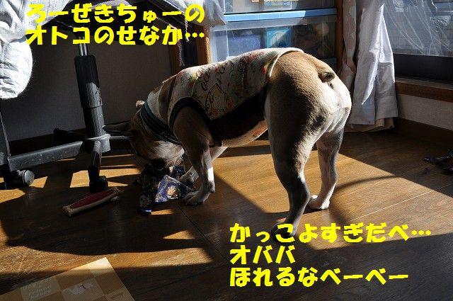 076_20140101195340875.jpg