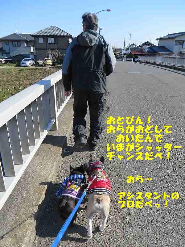 120_20140115142349edb.jpg