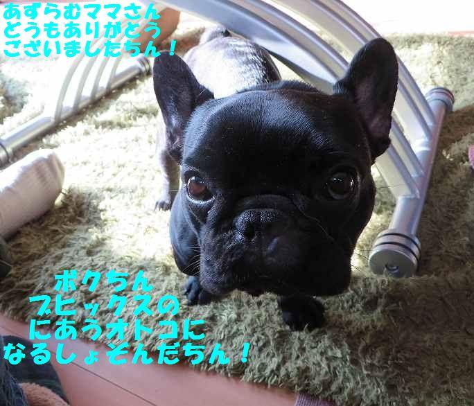 180_20140127095608ad2.jpg