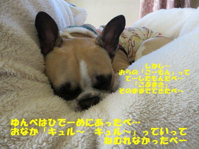 IMG_7663.jpg
