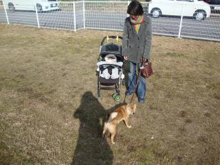 家族総出散歩