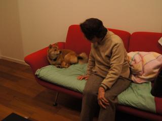 ハルと祖母