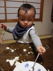 豆腐あそび
