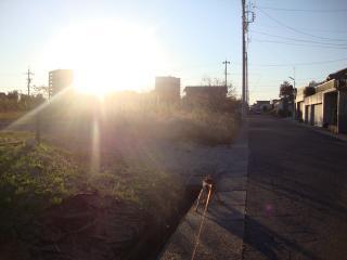 夕陽にむかって