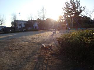 年末散歩②