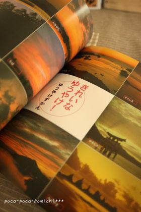 2011-10-30_5674.jpg