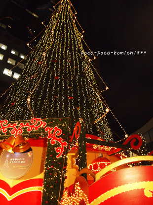2011-12-03_7671.jpg