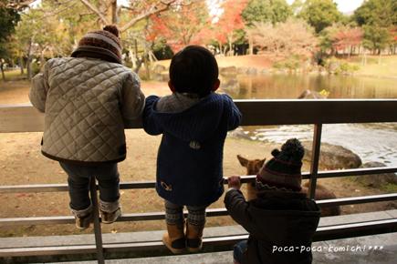 2011-12-12_8056.jpg