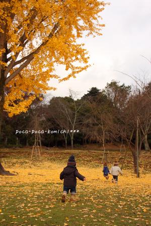 2011-12-12_8098.jpg