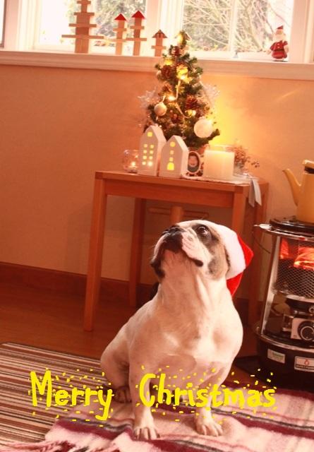 2010 クリスマス merry christmas