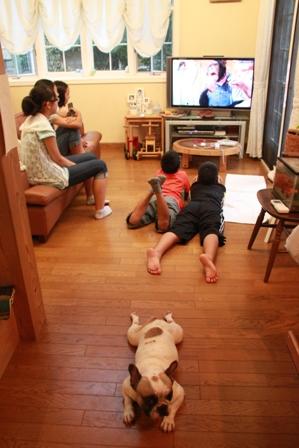 2011 夏休み 日常