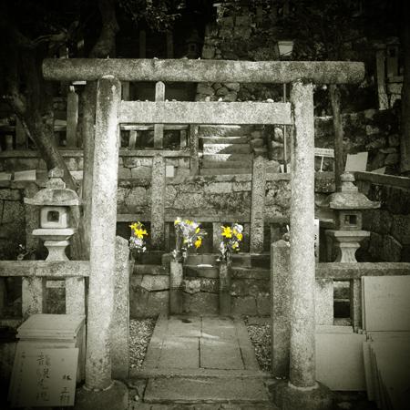 11・龍馬と慎太郎の墓