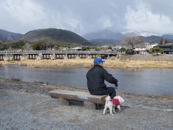 03・犬と散歩