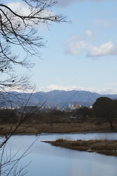 20・京都タワーが見えた