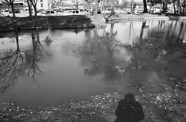 02・氷の張る池