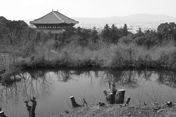 07・大仏殿を望む