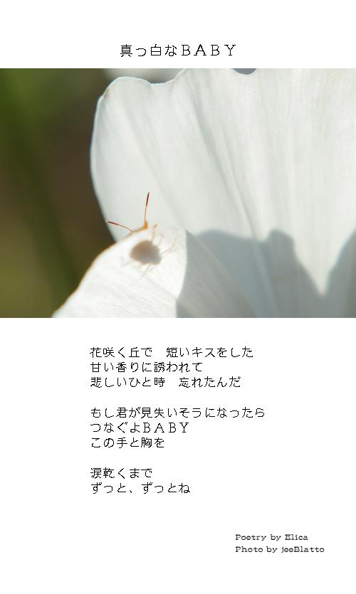 02・真っ白なBABY:E&J