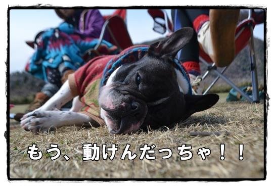 犬山キャン15