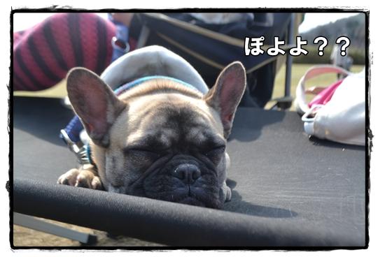 犬山キャン17