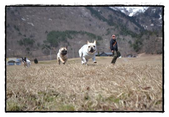 牧野草原走る