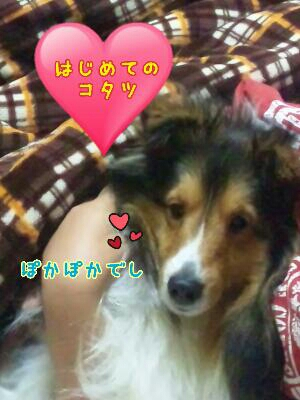 fc2_2013-12-15_21-22-39-576.jpg